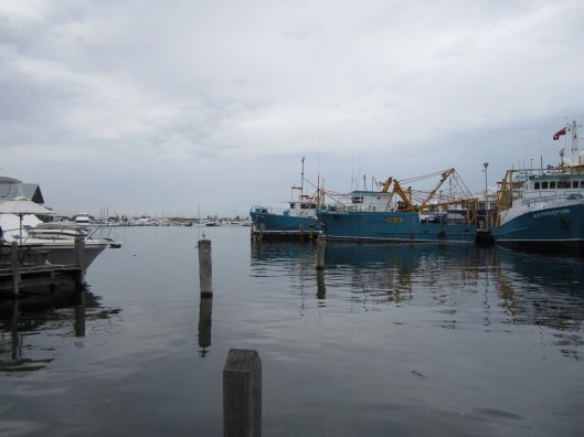 Boats in Fremantle Fishing Boat Harbour
