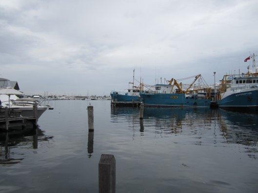 Boats in Fremantle Fishing Boat Harbour